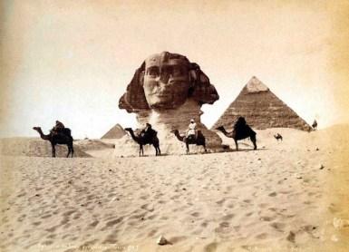 Maxime Du Camp - Sphinx de Gizeh