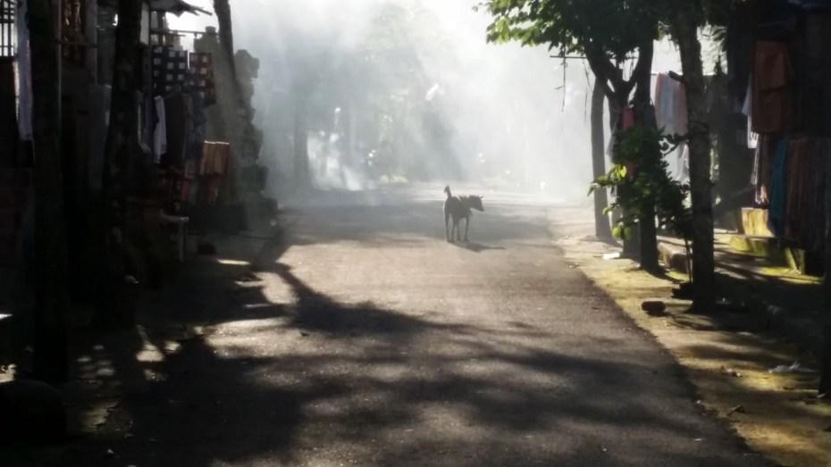 Rue enfumée de Gunung Kawi