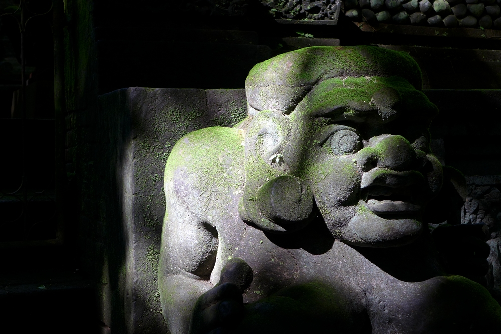 Ubud stories #3 : L'enfer émeraude