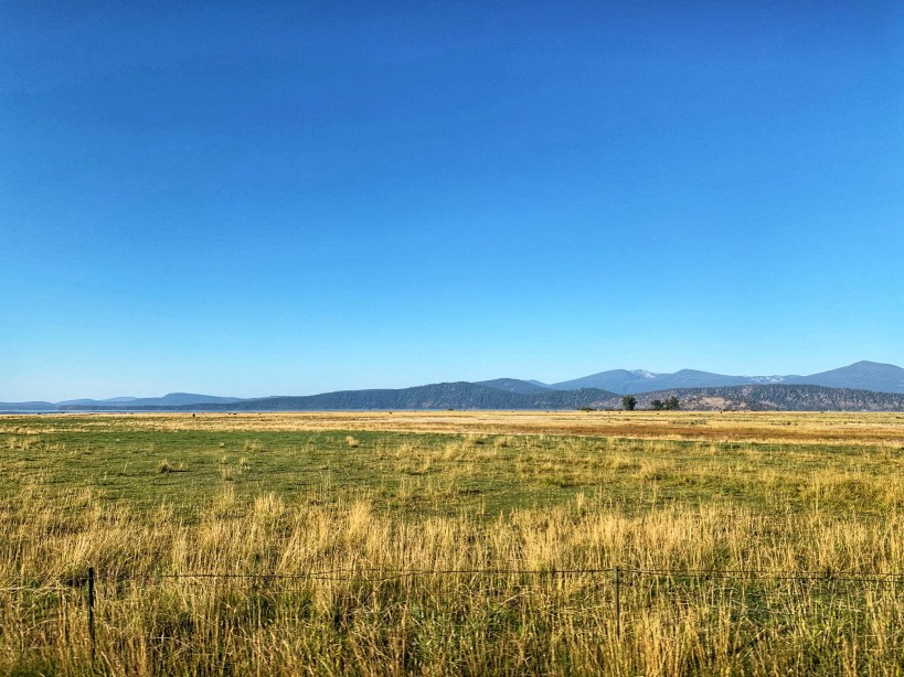 Golden Pastures around Fort Klamath Museum