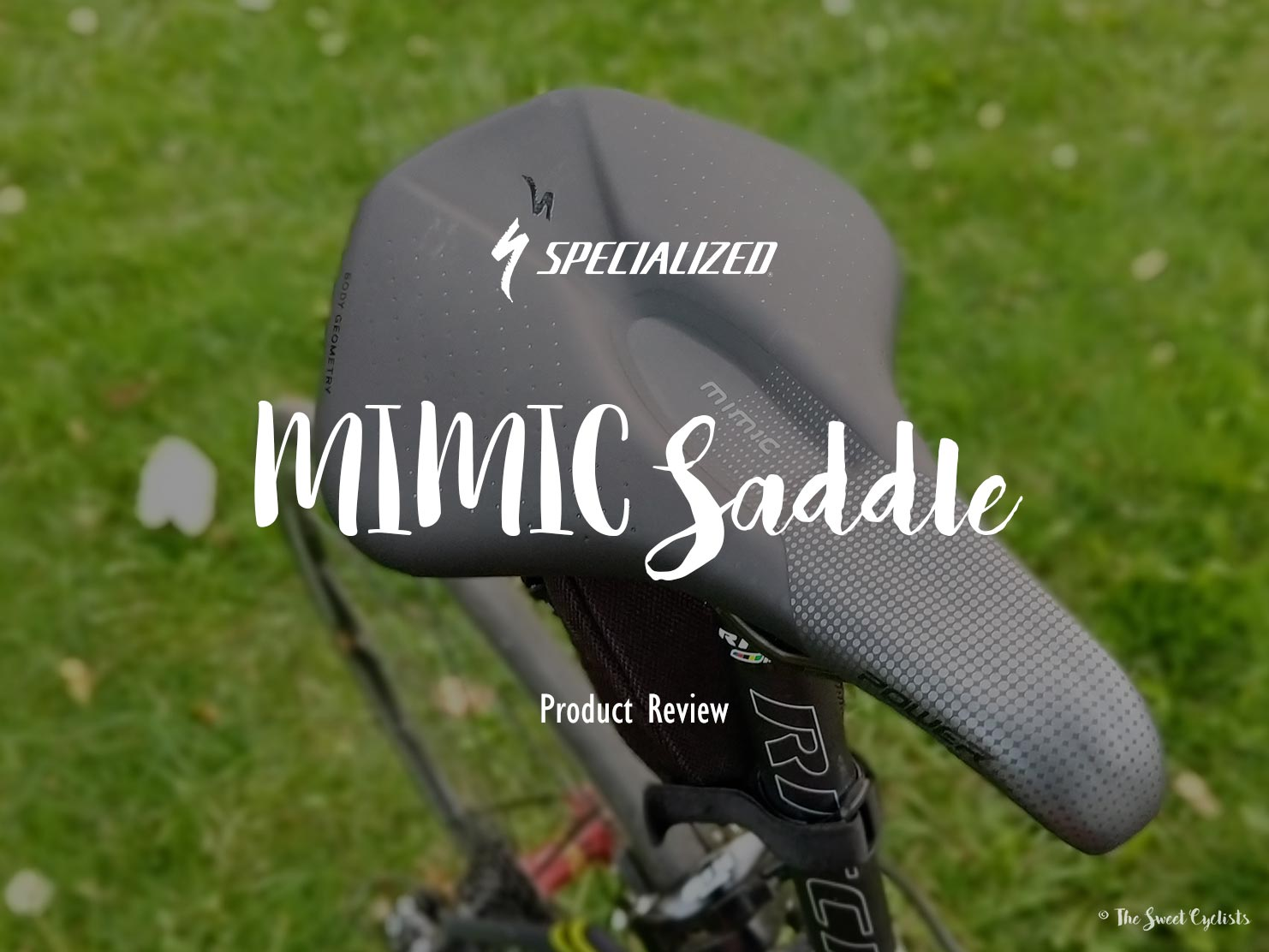 A saddle designed for Women's Body Geometry