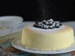 TSE Japanese Cake