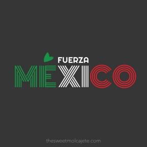 MÉXICO, DESPUÉS DEL 19S