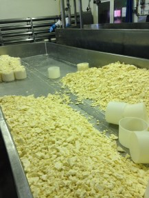 The curds