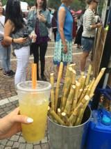 Sugar Cane $7