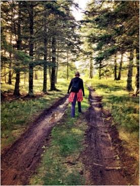 A Magical Walk