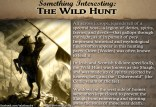 SomethingInteresting_WildHunt