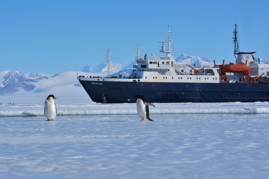 Win a trip to Ross Sea, Antarctica