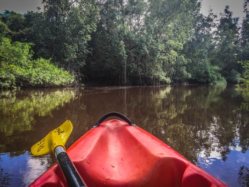 Kayak on the river in French Guiana