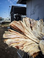 Dried fish in Cayenne, French Guiana
