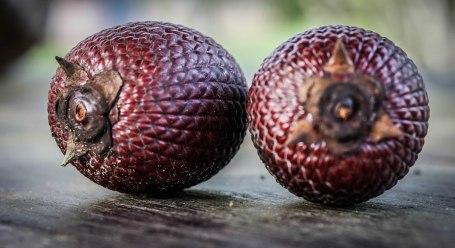 mauritie fruit