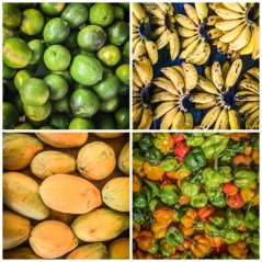 collage of fruits in Cayenne, French Guiana