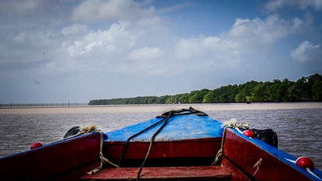 a wooden boat on a dolphin tour in Paramaribo