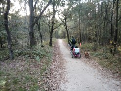 Bicycle Touring with a Dog
