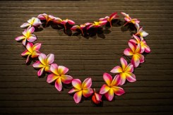 A heart formed with a flower wreath