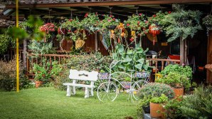 a beautiful garden in Ecuador