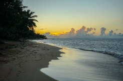 sunset at the beach of las terrenas in the Dominican Republic