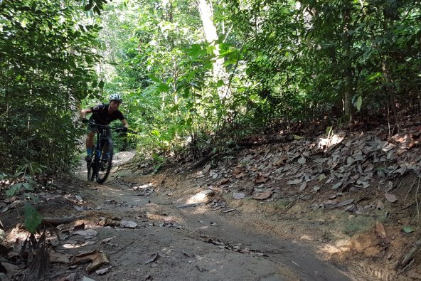 A man on a mountain bicycle in Bukit Kiara, Malaysia in SoutheastAsia