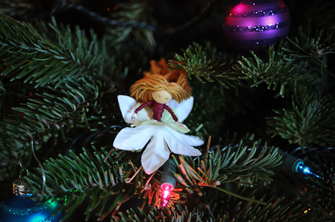 Ornament-6098