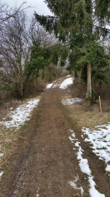 Where the path was mostly mud and ice