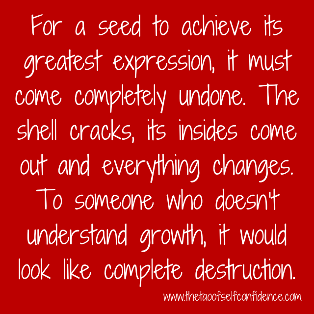 For a seed to achieve its greatest expression, it must come completely undone. The shell cracks, its insides come out and everything changes. To someone who doesn't understand growth, it would look like complete destruction.