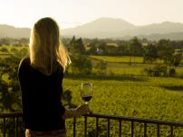 Californian Wine (2)