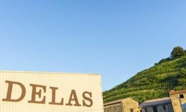 Febvre Delas Freres in the Rhone Valley