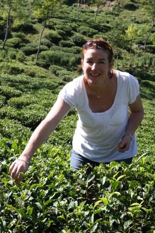 Annie Irwin Suki Tea