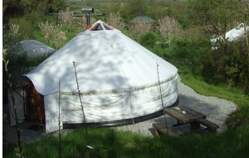 The Ultimate Guide to Glamping in Ireland Pink Apple Orchard