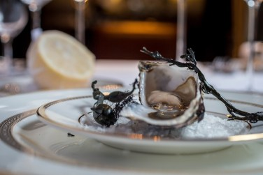 Win an Oyster Dinner for Four on the opening night of the annual Oyster Festival at The Shelbourne Hotel