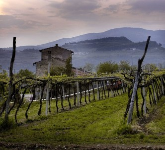 Fall in Love with Wines from la Bella Valpolicella