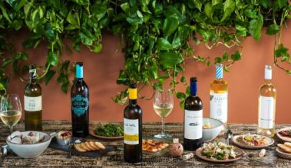 Experience an Exclusive Taste of Rias Baixas: Dublin Albarino Wine and Tapas Trail for €49.95