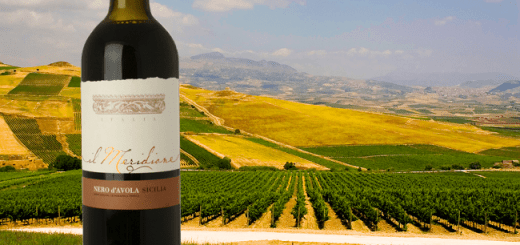 Il Meridione Nero d'Avola – Wine of the Week from O'Briens Wine 2