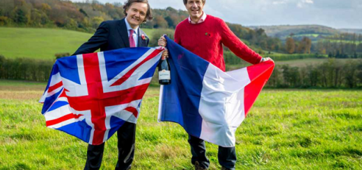 Taittinger, 1st Champagne House to Plant in the UK | Domaine Evermond