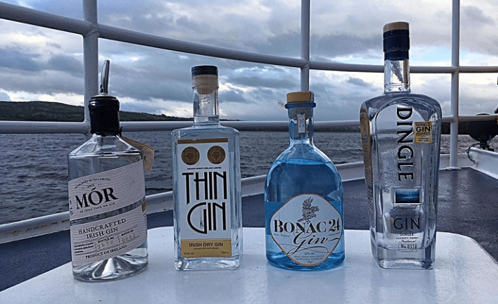 Gin Experiences in Ireland 2