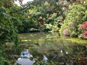 The Lake at Marlfield House