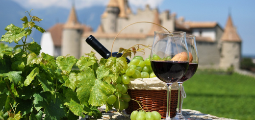 4 Less Known French Wine Regions to Taste Character and Finesse [July Edition]