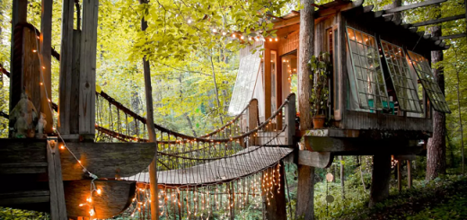 This Enchanting Airbnb Treehouse is the site's Hottest Listing Right Now