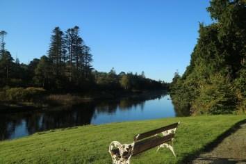 Ballynahinch Castle gardens