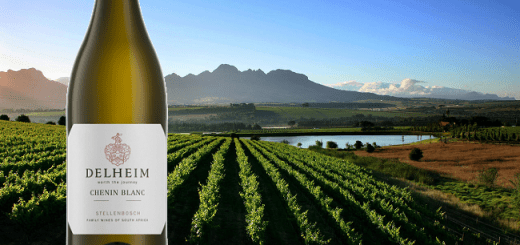 A Cheeky Chenin Blanc from South Africa to Start Sipping 2017