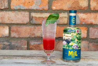 Mil Gin Launch 06