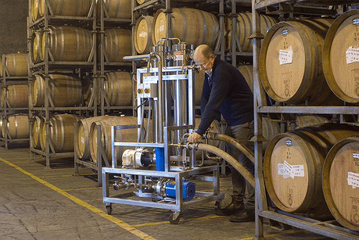 A Look into the Backstage of Winemaking - The Journey of Wine from Grape to Glass