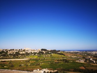 MSC Malta 4