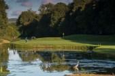 Mount Juliet 3 heron 7 golfers 3434