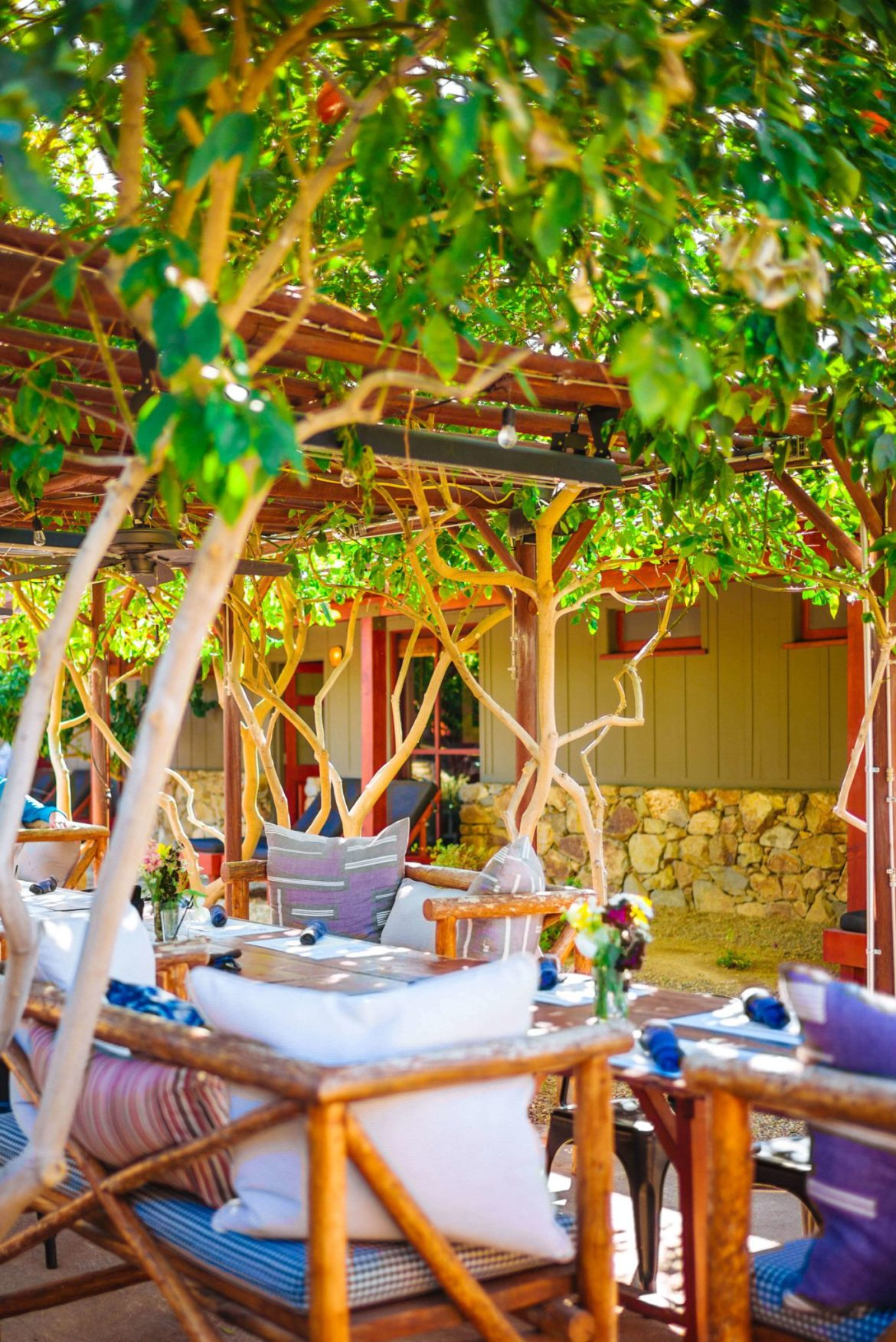 You'll find the best outdoor dining in Palm Springs seated under the orange trees at this hidden gem the Barn Kitchen at Sparrows Lodge in Palm Springs, thetasteedit