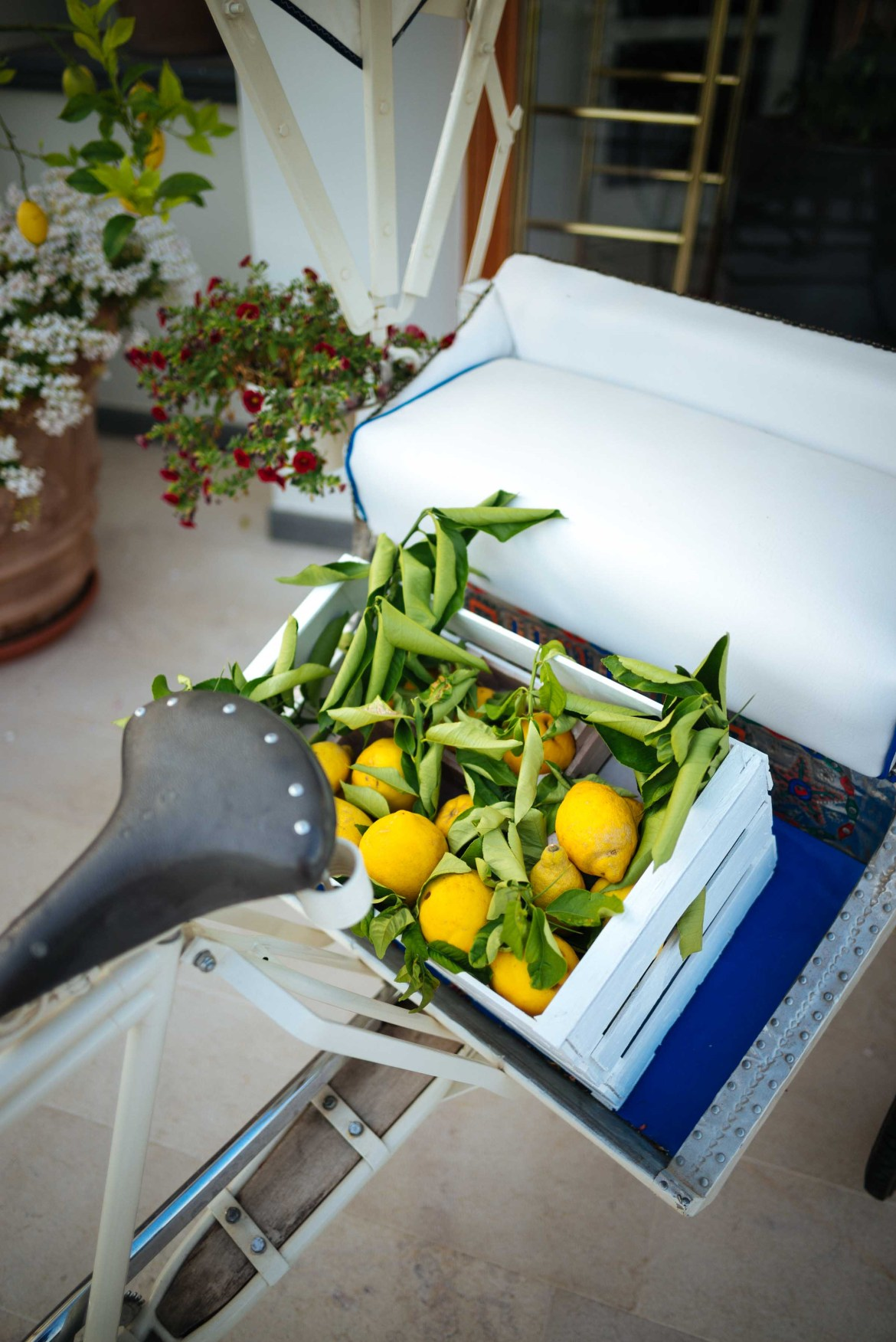 Lemons cover the Amalfi Coast in Italy. This hotel in Ischia Italy welcomes guests with a bike full of lemons.   thetasteedit.com #italy #travel #hotel
