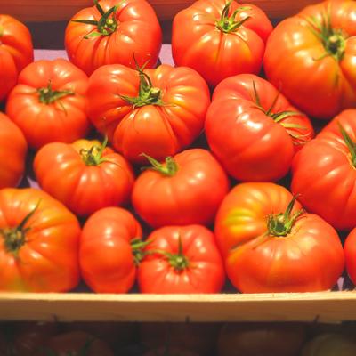 Tomatoes umami workshop on vegetables French Rungis market