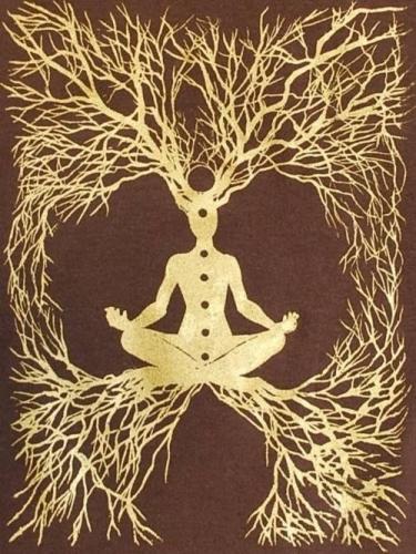 meditate mind