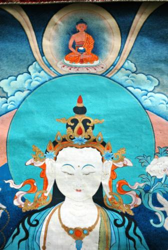 compassionbuddha