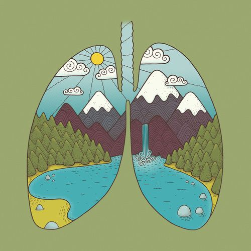 lungs mountains